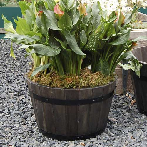 mims-pottery-hardwood-planters